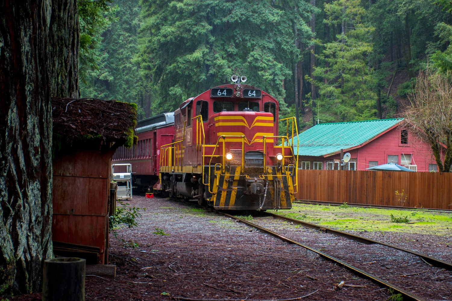 Skunk train discount coupons
